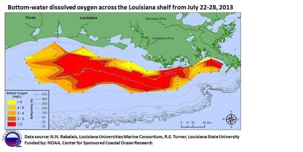 2013 gulf dead zone